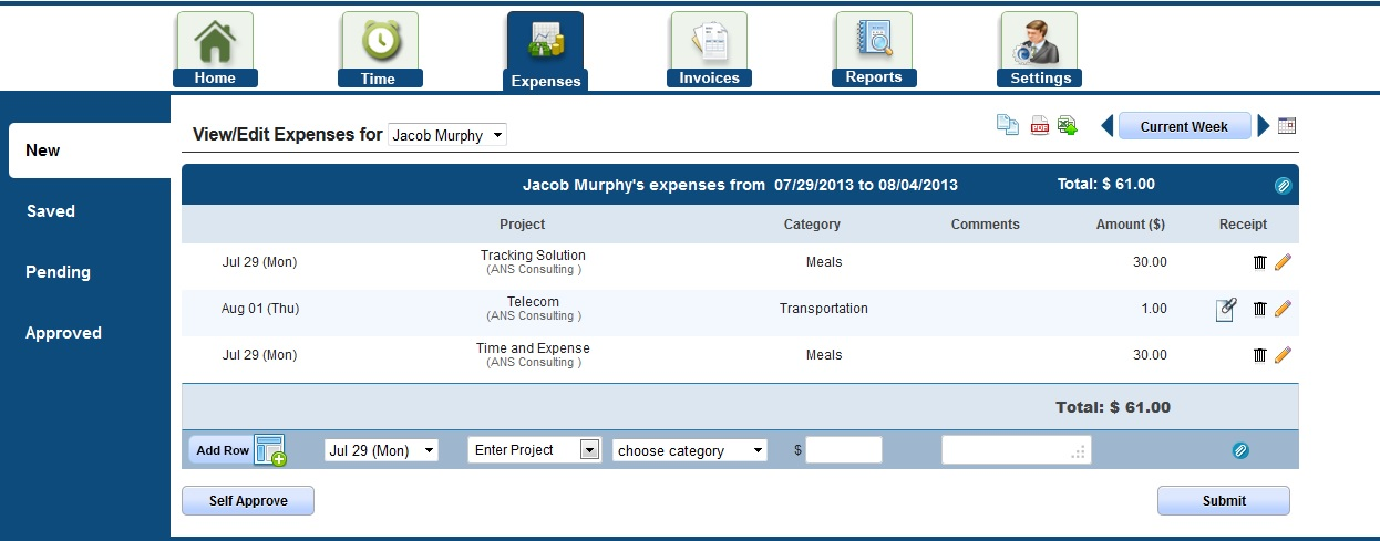 Expense Submission snapshot in AccountSight expense tracker